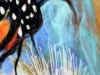 soft-painting-monarch-butterflies-closeup-4_0